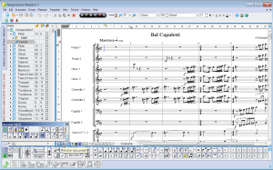 Music notation software   MagicScore Maestro